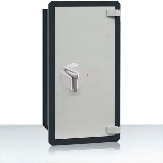CLES wall AF6 wall safe